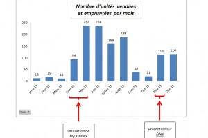 Point d'étape n°9 : Mon bilan 2013, 1247 ebooks vendus et empruntés